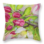 Apple Blossom Buds On A Greeting Card Throw Pillow