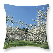 Apple Blossom Trees Norway Throw Pillow