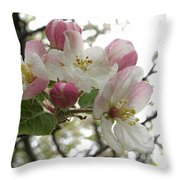 Apple Blossoms - Wild Apple Throw Pillow