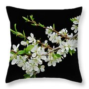 Apple Blossoms 2 Throw Pillow