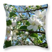 Apple Blossoms Art Prints 60 Spring Apple Tree Blossoms Blue Sky Landscape Throw Pillow
