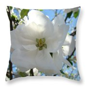Apple Blossoms Art Prints Canvas Spring Tree Blossom Baslee Troutman Throw Pillow