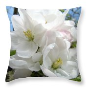 Apple Blossoms Art Prints Giclee 48 Spring Apple Tree Blossoms Blue Sky Macro Flowers Throw Pillow