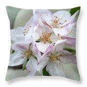 Apple Blossoms From My Hepburn Garden Throw Pillow