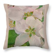 Apple Blossoms Throw Pillow by Sharon E Allen