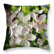 Apple Blossoms Square Throw Pillow