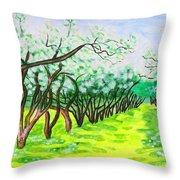 Apple Garden In Blossom Throw Pillow