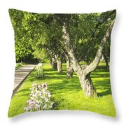 Apple Garden Throw Pillow