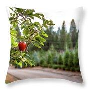 Apple Hill Throw Pillow