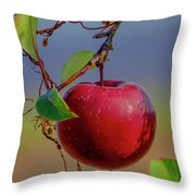 Apple On A Tree Throw Pillow