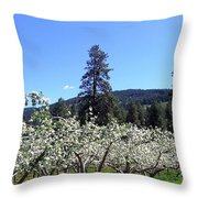 Apple Orchard In Bloom Throw Pillow