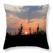 Apple Orchard Silhouette Throw Pillow