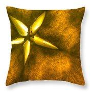 Apple Slice Throw Pillow