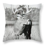 Apple Snack Throw Pillow