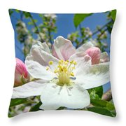 Apple Tree Blossom Art Prints Springtime Nature Baslee Troutman Throw Pillow