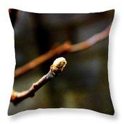Apple Tree Bud  Throw Pillow