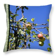 Apple Tree With Apples And Flowers. Amazing Nature Throw Pillow