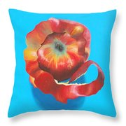 Apple Twist Throw Pillow
