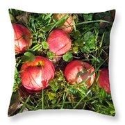 Apples From My Garden Throw Pillow