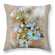 Apples In The Spring Throw Pillow