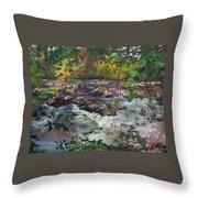 Appomattox View Throw Pillow