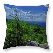 Approaching Little Gap On The Appalachian Trail In Pa Throw Pillow