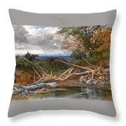 Approaching Storm In A Wooded Landscape Throw Pillow