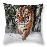 Approaching Tiger Throw Pillow