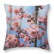 Apricot Blossom Throw Pillow