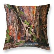 Apricot Canyon 2 Throw Pillow