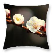 Apricot Flowers Throw Pillow
