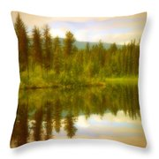 Apricot Reflections Throw Pillow