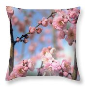 Apricot Tree Blossoms Throw Pillow