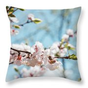 Apricots Bloom Throw Pillow