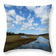April Day Throw Pillow