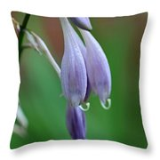 April Ends Throw Pillow