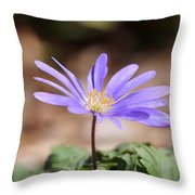 April Grecian Wind Flower  Throw Pillow