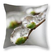 April Ice Storm 5 Throw Pillow