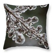 April Ice Storm 8 Throw Pillow