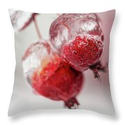 April Ice Storm Apples Throw Pillow