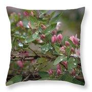 April Showers 6 Throw Pillow
