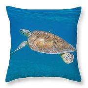 Aqua Glider Throw Pillow