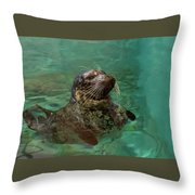 Aquarium Seal  Throw Pillow