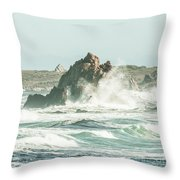 Aquatic Spray Throw Pillow