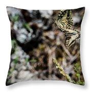 Aquino's Butterflies Throw Pillow