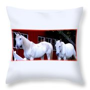 Arab Horses At Home, Behind Their Fence   Throw Pillow