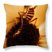 Arabesque - Gold Throw Pillow