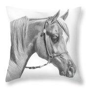 Arabian 2 Throw Pillow