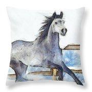 Arabian Horse And Snow - Da Throw Pillow