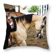 Arabian Show Horse 5 Throw Pillow